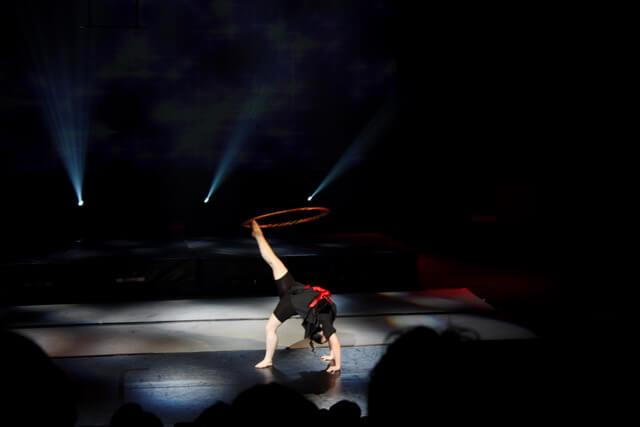 gal2011(30)